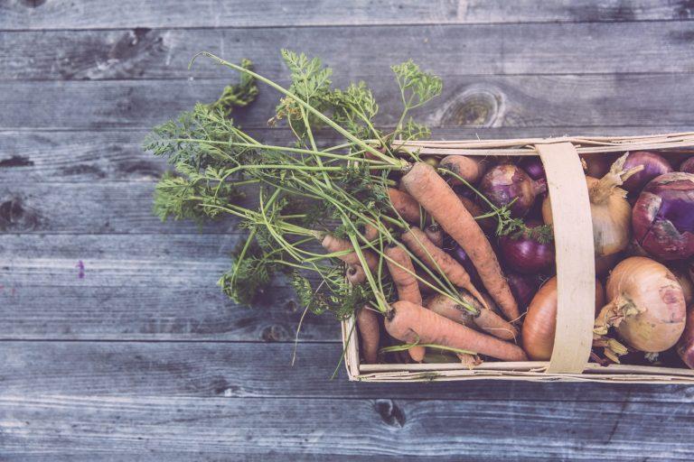 Attività di informazione e promozione dei prodotti agro alimentari di qualità