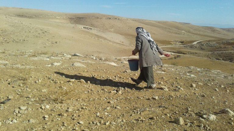 Progetto in Palestina